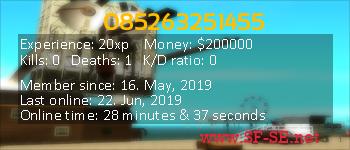 Player statistics userbar for 085263251455